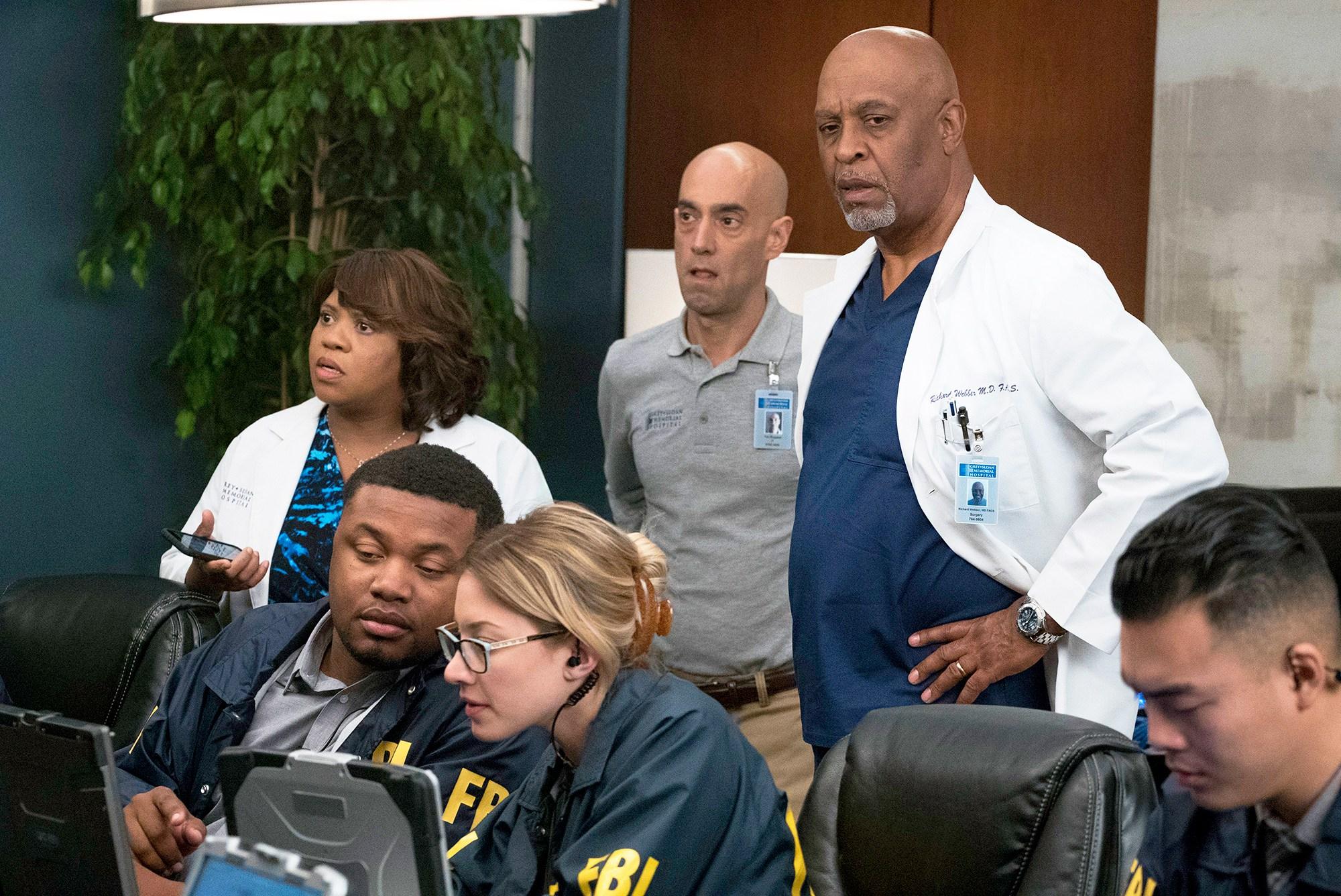 Chandra Wilson and James Pickens Jr. on 'Grey's Anatomy'