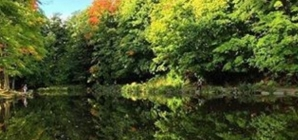 Real Style Explores Ontario's Scenic Bruce Trail