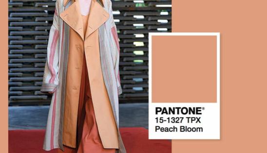 Harrods X Pantone Teach The Art of Colour