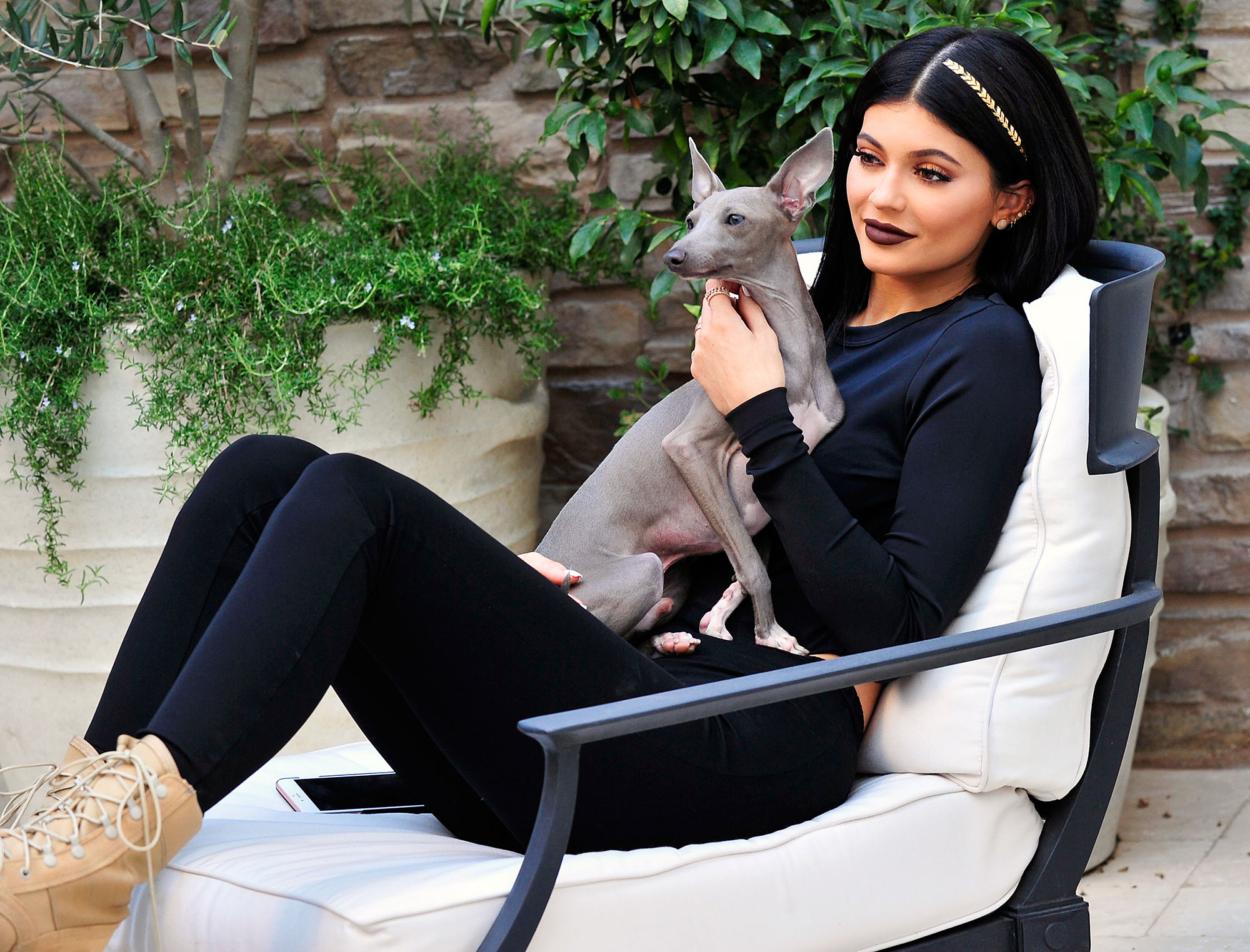 Where Is Norman? Kylie Jenner Reveals What Happened to Her Dog